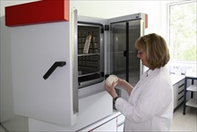 BINDER KB 240 refrigerated incubator