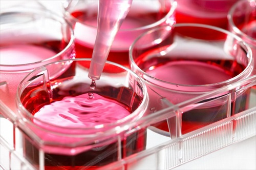 Cell culture - NMR for QbD biologics development