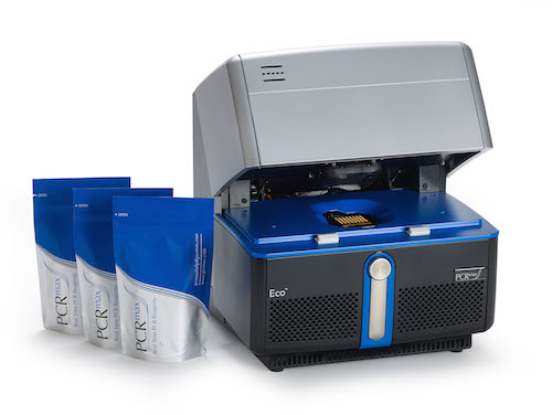 Eco 48 real time PCR system