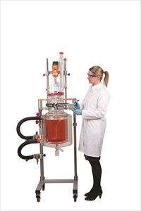 Reactor-Ready Pilot Lab Reactor