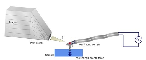 Schematic to illustrate Lorentz Contact Resonance imaging
