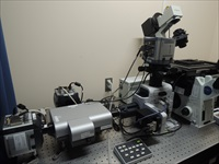 Three Andor iXon3 EMCCD cameras surround the Andor Revolution XD spinning disk confocal microscope in