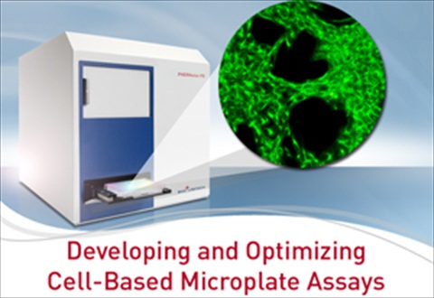 cell-based-assays