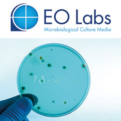 E & O Laboratories Ltd