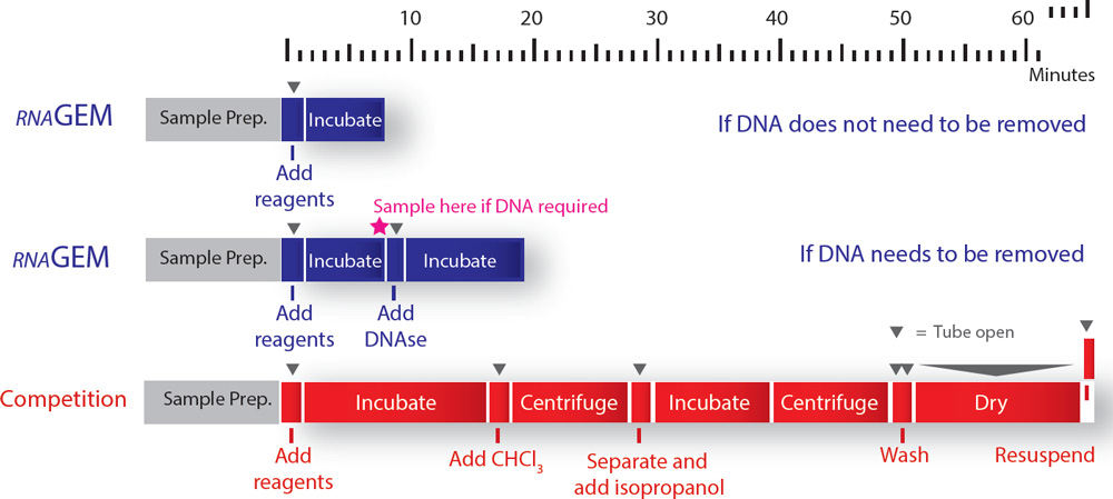 mRNA-Profiles-as-Close-to-Biological-Reality-as-Possible