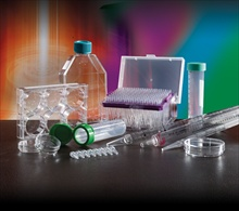 'High Quality Tissue Culture Plasticware' from Porvair Sciences