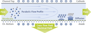 Electrical Asymmetrical Flow Field Flow Fractionation